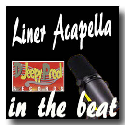 Jingle Dj  ''Liner in the beat'' by djeepyprod com